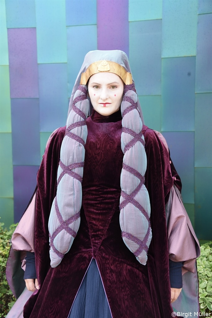 Amidala purple travel_19
