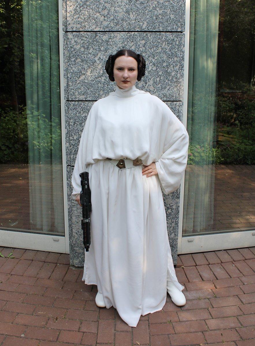 Leia senatorial_01