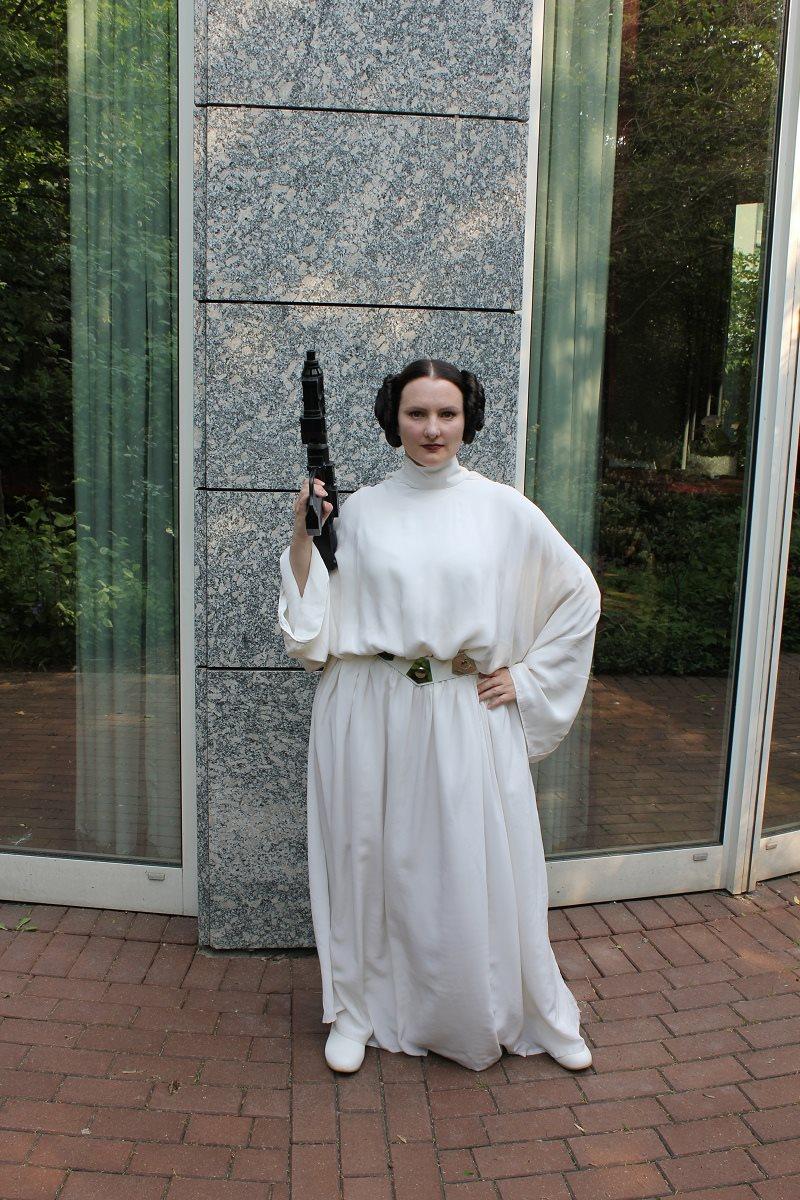 Leia senatorial_02