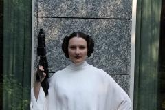 Leia senatorial_07